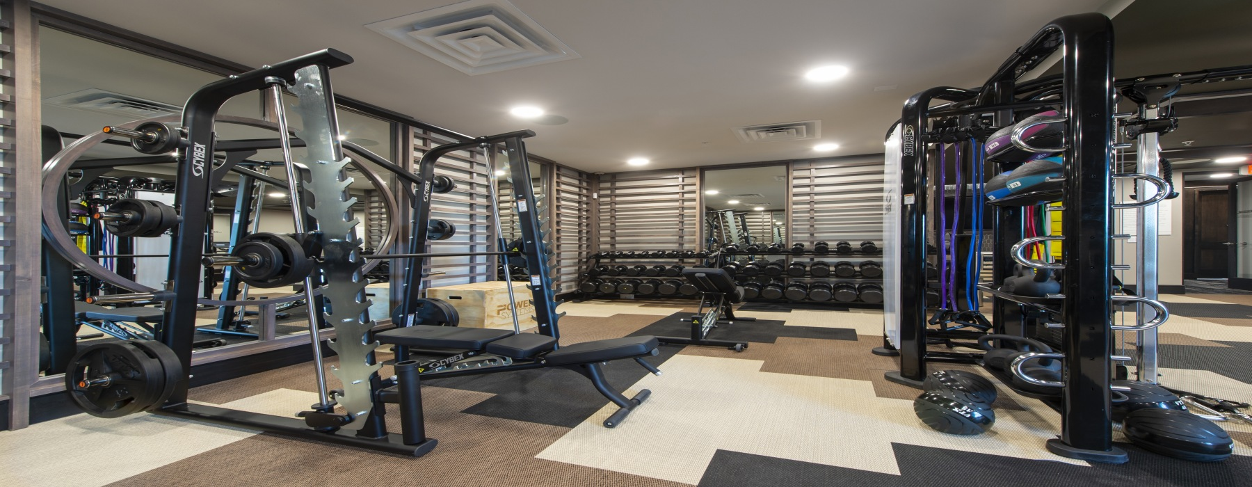 Gym with strength equipment